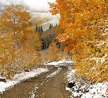 Autumn Road by David Kocherhans
