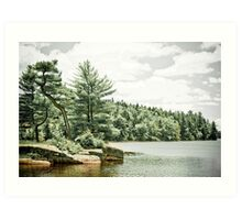Isolated Lake Art Print