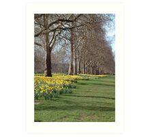 St Jame's Park in the spring Art Print