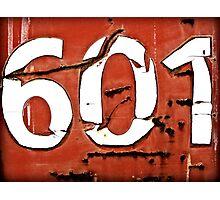601 Photographic Print