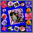 Honey Bee and Summer Flowers Collage by BlueMoonRose