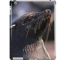Catching a Few Rays iPad Case/Skin
