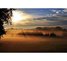 Morning in the Meadow Photographic Print