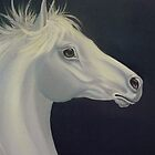 Silver Stallion by Vivian Eagleson