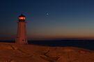 Shining Her Light Under The Stars of Night by Darlene Ruhs
