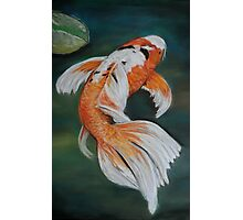 Ella the Butterfly Koi Photographic Print