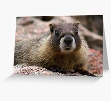 """The Look of """"Can I Trust You?"""" Greeting Card"""