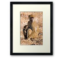 Cuddles Mummy Framed Print