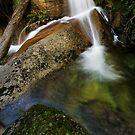 Eurobin Cascades by Robert Mullner