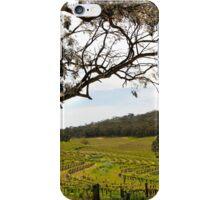 Vineyard Landscape in Springtime iPhone Case/Skin