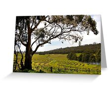 Vineyard Landscape in Springtime Greeting Card