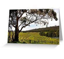 Vineyard Landscape in Springtime Greeting Card