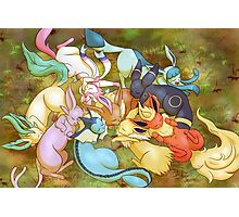 Eveelution Nap Time Photographic Print
