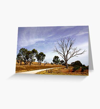 Sun Kissed Australian Landscape Greeting Card
