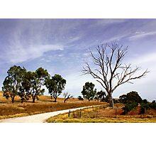 Sun Kissed Australian Landscape Photographic Print