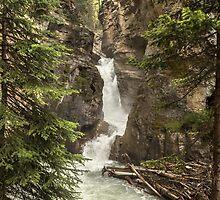 Waterfall at Johnston Canyon, Banff, Canada by Sandra Johnston