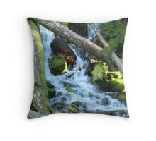 Piece of Mind Throw Pillow