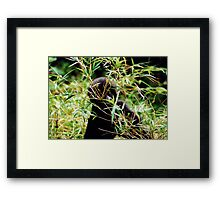 Eye on the Future Framed Print