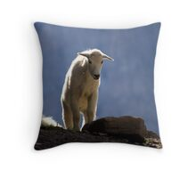Long way down? Throw Pillow
