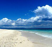 MIDDAY STROLL-BOUNTY ISLAND FIJI by Wayne Dowsent