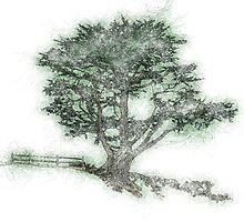 Tree Sketch by 2HivelysArt