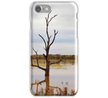 Dead Tree in the River iPhone Case/Skin
