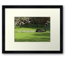 Family File Framed Print
