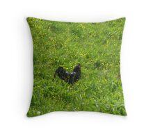 Black cock on a green medow Throw Pillow