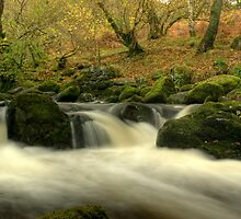 The Beck Above Aira Force by Jamie  Green