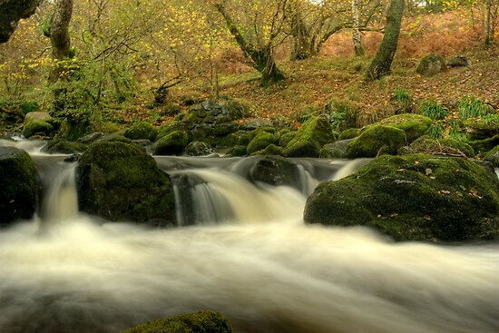 The Beck Above Aira Force by VoluntaryRanger