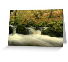 The Beck Above Aira Force Greeting Card