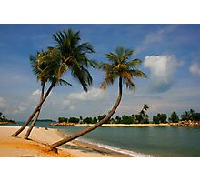 Tropical Relaxation Photographic Print