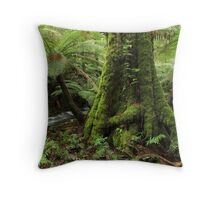 The Song Remains The same Throw Pillow
