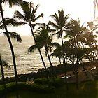Hawaiian Sun Shower by Helen Barnett