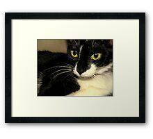 Clara Framed Print