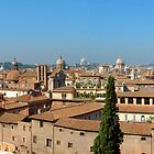 The Domes of Rome by trobe