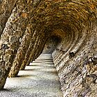 Park Guell by Neal Petts