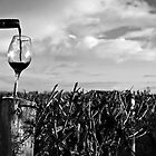 Vineyard at Dawn by Courtney McIntyre