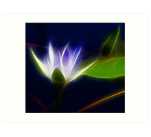 Lotus Flower fractalius Art Print