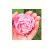 Soft Embrace - Pink Rose - fractalius Art Print
