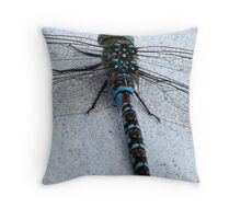 Stationary Dragon Throw Pillow