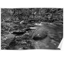 Royal NAtional Park B+W Poster