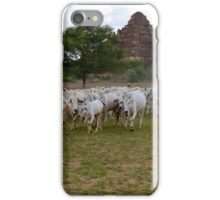 Herding in Bagan iPhone Case/Skin