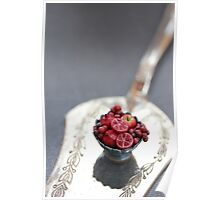 Burgundy Fruit Cup Poster