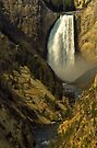 Lower Falls on the Yellowstone River by Joe Elliott