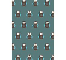 Brown & Blue Owl (Pattern 2) Photographic Print