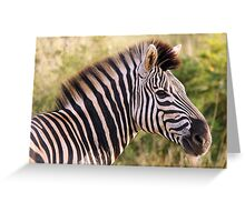 Kruger Zebra Greeting Card