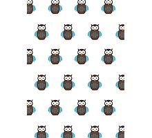 Brown & Blue Owl (Pattern) Photographic Print