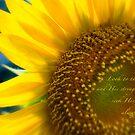 Sunflower Blue by JulieLegg