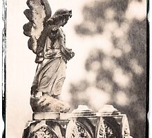 """ Angel "" ... Graveyard Adornments #64  by Malcolm Heberle"